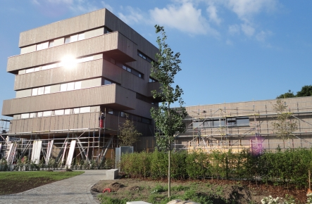 Project Dubrucq Brussel - Brandvertragende behandeling van hout